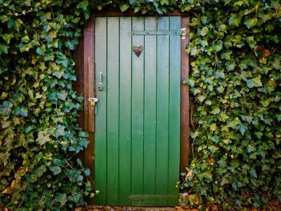 amandaricks.com/doory-was-green-with-ivy/