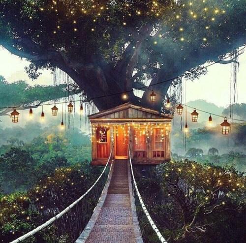 amandaricks.com/twinkle-light-house