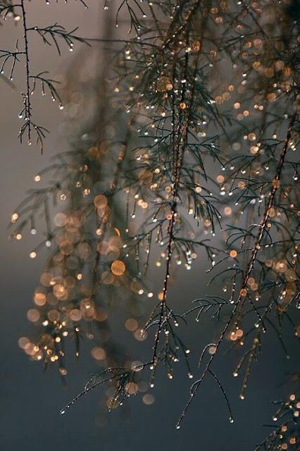 amandaricks.com/sparkling-dew-drops/